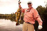BRAZIL, Agua Boa, fly fisherman holding a Peacock Bass, Agua Boa River and resort