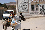 A Palestinian farmer rides a donkey past graffiti showing the late Palestinian leader Yasser Arafat after Israeli settlers attacked Palestinian farmers while they collect Olive at Azmout village near the West Bank City of Nablus, 15 October 2010. Israeli settlers shoot into the air to stop Palestinians from collect their olives, Palestinian sources reported. Photo by Wagdi Eshtayah