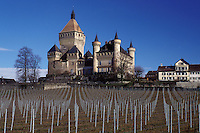 chateau, castle, Switzerland, Vaud, Europe, Vufflens le Chateau in the early spring with a wine vineyard in the foreground.