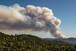 May 26, 2014 Hunter Fire-- View of Hunters Fire from Greeley Hill Road about 5:00 pm Tuesday Photo by Al Golub/Golub Photography
