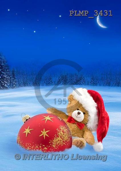Marek, CHRISTMAS ANIMALS, WEIHNACHTEN TIERE, NAVIDAD ANIMALES, teddies, photos+++++,PLMP3431,#Xa# in snow,outsite,