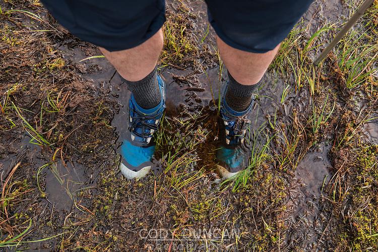 Hikers feet in trail runners standing in ankle deep mud, Lofoten Islands, Norway