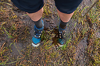 Hikers feet in trail runners standing in ankle deep mud, Lofoten Islands, Norway