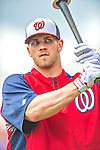 2013-02-22 MLB: Washington Nationals Spring Training Workout