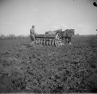 Alberta - Man [Robert Brebner?] plowing field and smoking a pipe.<br /> <br /> From the Robert McKay Brebner fonds,