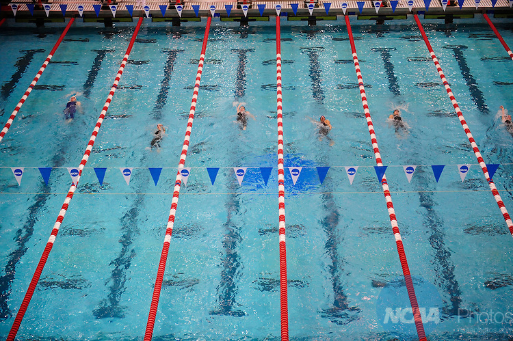 14 MAR 2009: The Division II Men's and Women's Swimming and Diving Championships take place at the Campus Recreation and Wellness Center at the University of Houson in Houston, TX. Stephen Nowland/NCAA Photos