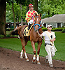 Winning Image before The Dashing Beauty Stakes at Delaware Park on 6/27/13