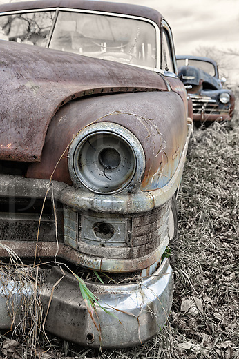 A rusty and abandoned 1950's Chrysler car in the winter weeds of a rural country junkyard, a hand tinted half black and white photograph.