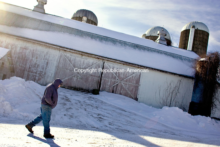 TORRINGTON, CT-05 FEBRUARY 2009-020509BF05-- Harry Klug, owner of Klug Farm, along with his father Butch, walks past the barn that houses the 90 milking cows at the farm in Torrington. Higher costs overall and shrinking profits per gallon on milk is taking a toll on Connecticut's remaining dairy farmers.<br />  Bob Falcetti Republican-American