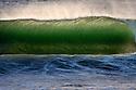 Terra Mar Wave
