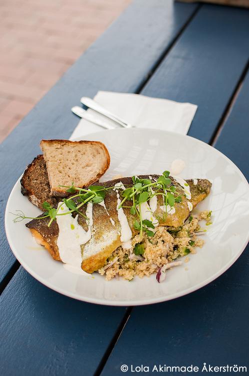 Pan-fried Arctic char with cous-cous at Rosendals Trädgård & Kafe on Djurgården