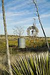Challenge No. 27 windmill broken and hanging from its tower, water tank. Yucca plants and stalks. Rural New Mexico