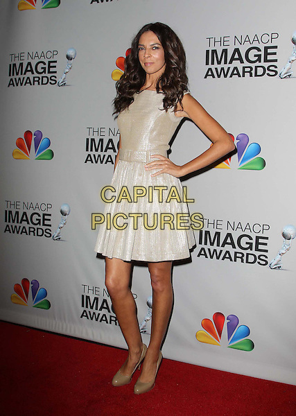 Terri Seymour.44th NAACP Image Awards - Press Room Held At The Shrine Auditorium, Los Angeles, California, USA, .1st February 2013..full length gold dress hand on hip shiny .CAP/ADM/KB.©Kevan Brooks/AdMedia/Capital Pictures.