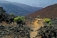 The barren and arid landscape of the crater in HALEAKALA NATIONAL PARK on Maui in Hawaii is rugged and dominated by many cinder cones