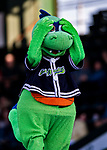 24 August 2019: Vermont Lake Monsters Mascot Champ entertains entertains the fans during a game against the Lowell Spinners at Centennial Field in Burlington, Vermont. The Lake Monsters fell to the Spinners 3-2 in NY Penn League action. Mandatory Credit: Ed Wolfstein Photo *** RAW (NEF) Image File Available ***