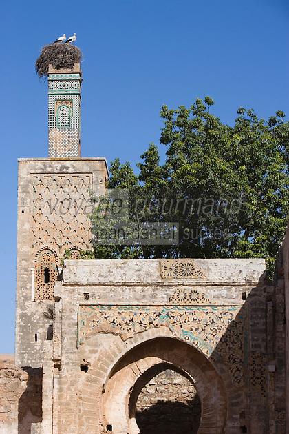 Afrique/Afrique du Nord/Maroc/Rabat: Chellah - le Minaret et son nid de cigognes