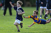 Junior Rugby, 8 June