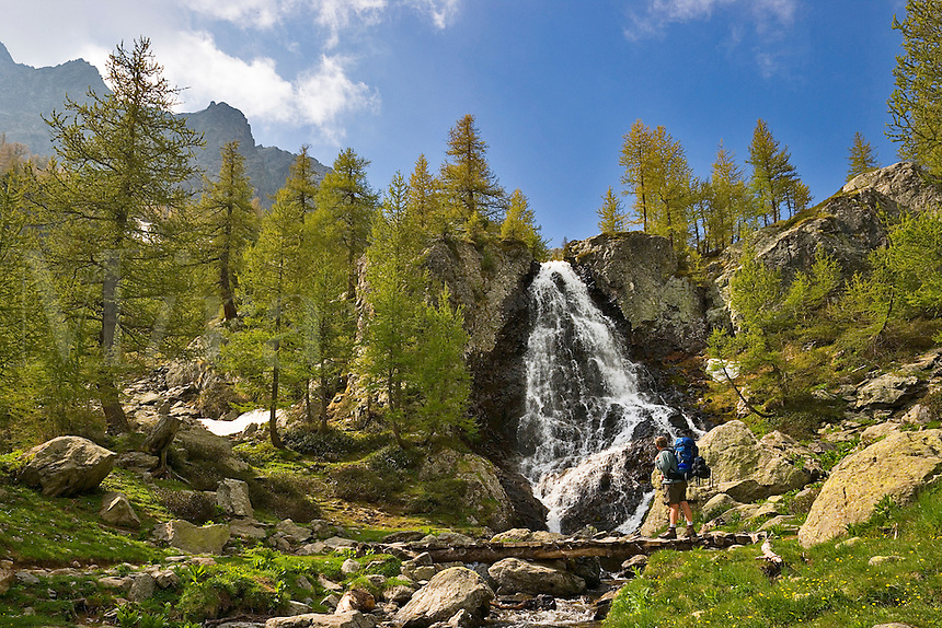 Parc National du Mercantour.  Hiker crosses a bridge over a mountain stream at the foot of a waterfall, tributary of the River Valmasque. Alpes-Maritimes, Provence, France.    Model released.