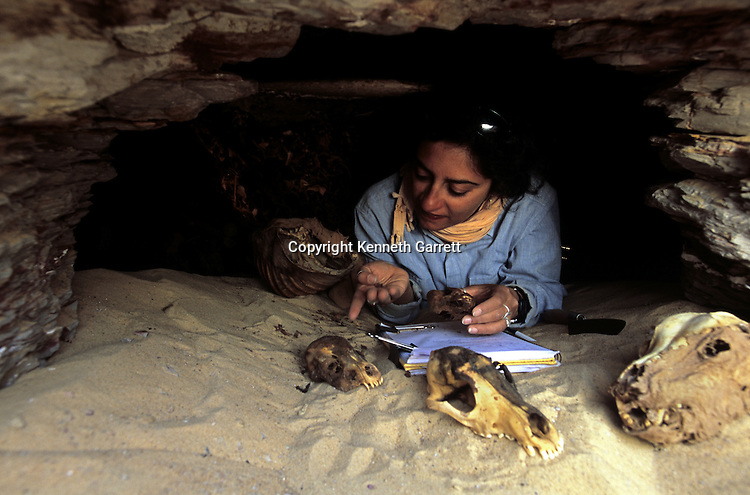 Salima Ikram in opening to a tomb containing dog and human remains, dog offering to god Anubus and Wepwawet, near Ain Dabashiya, Darb el-Arbaein, trade route, Egypt; Ancient Cultures; Archaeologist; Salima Ikram; Kharga Oasis; Desert; oasis
