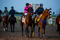 HALLANDALE BEACH, FL - JANUARY 27: West Coast with Javier Castellano at Pegasus World Cup Invitational at Gulfstream Park Race Track on January 27, 2018 in Hallandale Beach, Florida. (Photo by Alex Evers/Eclipse Sportswire/Getty Images)