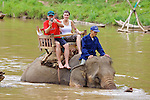 David & Montserrat Riding Elephant