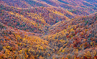 View of autumn colors from the Wildcat Rock Overlook, located in the Doughton Park Recreation Area along the Blue Ridge Parkway in northwest North Carolina