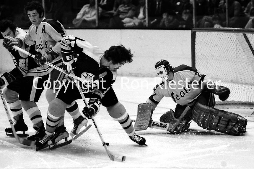 Boston Bruins Doug Gibson shot on Seals goalie Giles Meloche.,Seals Rick Smith  (photo 1973 by Ron Riesterer)