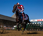 AUG 24: Midnight Bisou wins the Personal Ensign Stakes at Saratoga Racecourse in New York on August 24, 2019. Evers/Eclipse Sportswire/CSM
