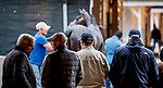 LOUISVILLE, KENTUCKY - APRIL 28: Fans watch as Roadster, trained by Bob Baffert, gets a bath after exercising in preparation for the Kentucky Derby at Churchill Downs in Louisville, Kentucky on April 28, 2019. Scott Serio/Eclipse Sportswire/CSM