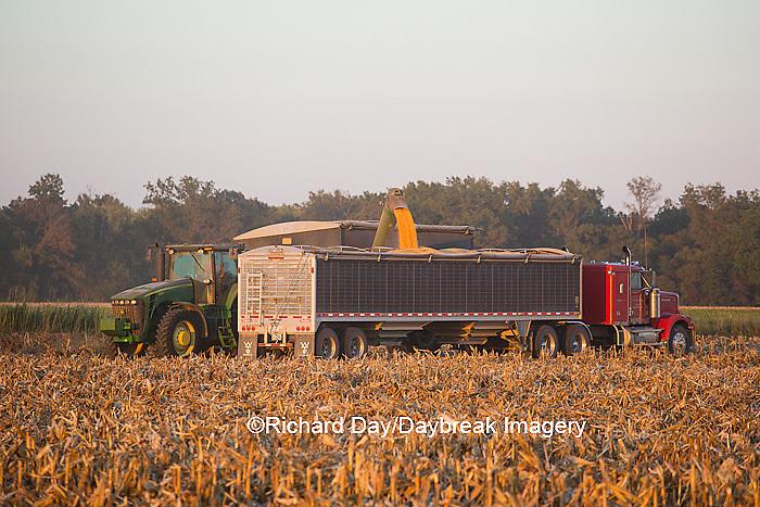 63801-06811 Grain wagon unloading corn into semi trailer in corn field, Marion Co., IL
