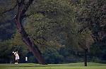 2008 M DII Golf