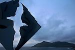Cap Horn dans la Mer de Drake.Une fois débarqué sur l'île Horn, onemprunteun caillebotis de bois glissant, et on rejoint un mémorialreprésentant un albatrosdécoupé dans un losange d'acierd qui veille sur les 15 000 marins et 800 navires disparus dans ces eaux australes.Derrière, noyé dans la brume et les embruns, le Horn (425 m) dresse sa falaise sévère et engazonnée..Mythical Cape Horn. the uttermost End of the Earth. Cape Horn, seen from the Chilean Navy station location. where it's possible to disembark. Ther'es a small church, a weatherofecast house and a memorial for the sake of the sailors who died here.