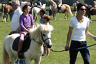 West Somerset Horse and Dog Show