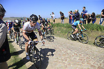 The peloton including Andre Greipel (GER) Lotto-Soudal on pave sector 25 Briastre a Solesmes during the 115th edition of the Paris-Roubaix 2017 race running 257km Compiegne to Roubaix, France. 9th April 2017.<br /> Picture: Eoin Clarke | Cyclefile<br /> <br /> <br /> All photos usage must carry mandatory copyright credit (&copy; Cyclefile | Eoin Clarke)