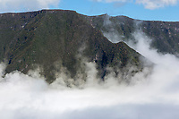 France, île de la Réunion, Parc national de La Réunion, classé Patrimoine Mondial de l'UNESCO, Piton de la Fournaise, brumes sur la vallée de la Rivière des Remparts // France, Reunion island (French overseas department), Parc National de La Reunion (Reunion National Park), listed as World Heritage by UNESCO, South Coast, fog on the river: riviere des remparts