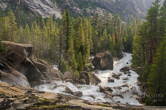 Tuolumne River decending through a forest, Yosemite National Park, California