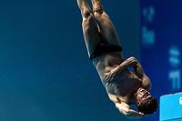 WILLIAMS Noah GBR<br /> Gwangju South Korea 20/07/2019<br /> Diving Men's 10m Platform Final<br /> 18th FINA World Aquatics Championships<br /> Nambu University Aquatics Center <br /> Photo © Andrea Staccioli / Deepbluemedia / Insidefoto