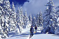 snowshoeing, trail, mountains, Switzerland, Vaud, Jura Mountains, Europe, A mother and daughter snowshoe in the deep snow on a trail which runs through a snow covered forest of evergreens in the winter in the Jura Mountains.