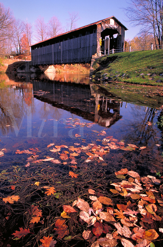 One of five historic covered bridges; spans Flat River; with autumn leaves, fall foliage. Fallasburg Michigan USA.