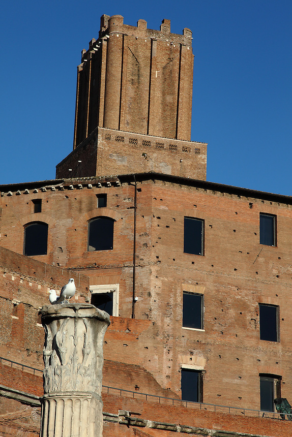 Rome, Fora: A view of a part of the ancient markets on the back of the large oriental exedra of the Forum of the emperor Trajan (end of the I century AD), with the high part of tower of the Militia (XIII century) on the background and a Corinthian capital on the top of a column in the Forum in foreground. There are two seagulls on the  capital.<br />
