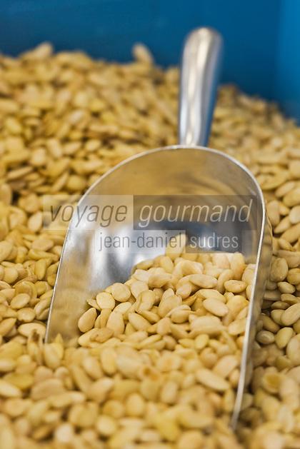 Europe/France/Aquitaine/64/Pyrénées-Atlantiques/Pays Basque/Saint-Jean-de-Luz:Amande  de  Valence (Espagne)pour la fabrication des macarons chez Adam