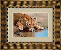 Image Size:  14&quot; x 20&quot;<br />
