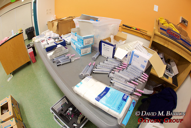 Supplies For Veterinary Staff, Welfleet Bay Wildlife Sanctuary / NE Aquarium, Audubon