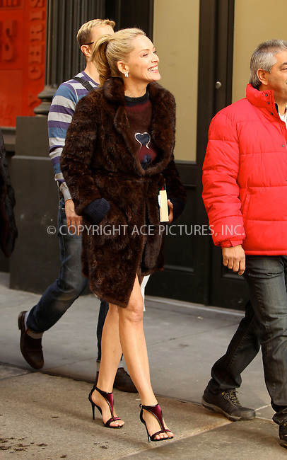 WWW.ACEPIXS.COM....November 29 2012, New York City....Actress Sharon Stone was on the set of the new movie 'Fading Gigolo' on November 29 2012 in New York City......By Line: Nancy Rivera/ACE Pictures......ACE Pictures, Inc...tel: 646 769 0430..Email: info@acepixs.com..www.acepixs.com
