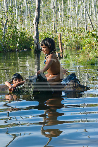 Xingu Indigenous Park, Mato Grosso State, Brazil. Aldeia Waura; children playing in the river.