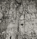 Scan of vintage print. Negative file #80-136-5. Rock face along interstate with drilling lines and geologist. 1 of 1; 1980