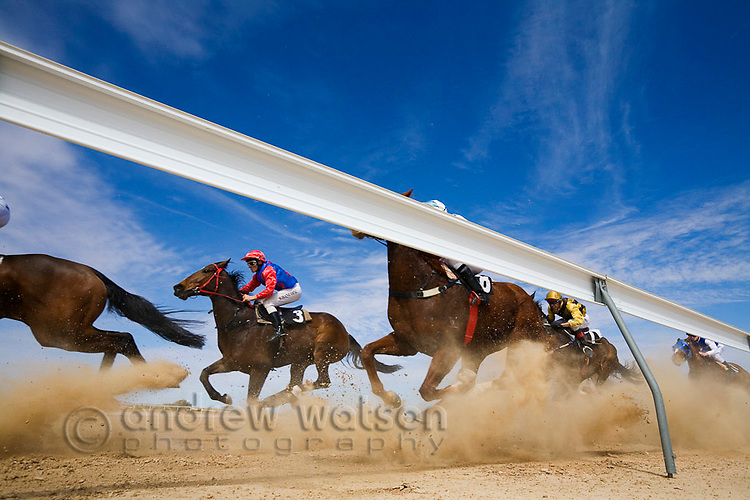 The horses round the last bend at Birdsville during the annual Birdsville Cup Races.  Every September thousands of horse racing enthusiasts arrive in the small outback town for the famous bush races.  Birdsville, Queensland, AUSTRALIA.