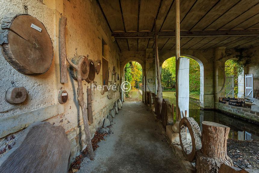 France, Allier (03), Villeneuve-sur-Allier, Arboretum de Balaine en automne, collection dendrologique