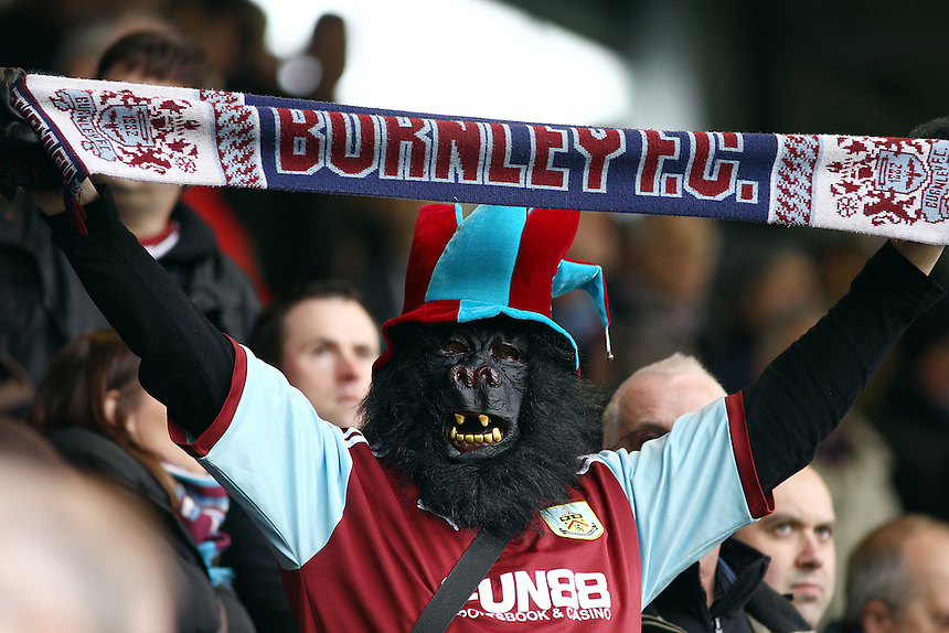 A Burnley fan, dressed as a gorilla, waves his Burnley FC scarf <br /> <br /> Photo by Rich Linley/CameraSport<br /> <br /> Football - The Football League Sky Bet Championship - Burnley v Middlesbrough - Saturday 12th April 2014 - Turf Moor - Burnley<br /> <br /> &copy; CameraSport - 43 Linden Ave. Countesthorpe. Leicester. England. LE8 5PG - Tel: +44 (0) 116 277 4147 - admin@camerasport.com - www.camerasport.com