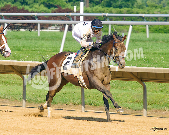 Packer Jack winning at Delaware Park on 7/6/16